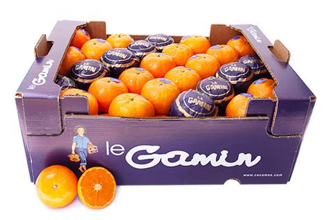 Caja confección de clementinas LeGamin