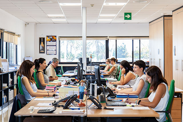 Interior oficinas Cañamás