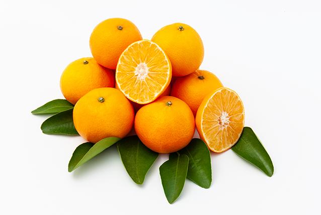 Composición clementina